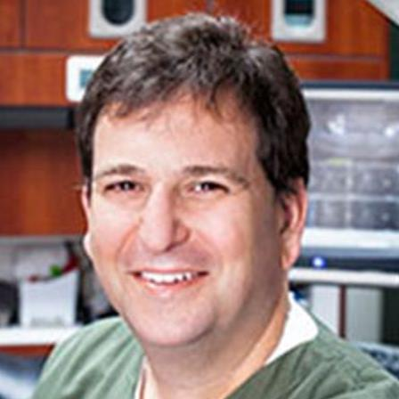 Dr. Steven D Spitz