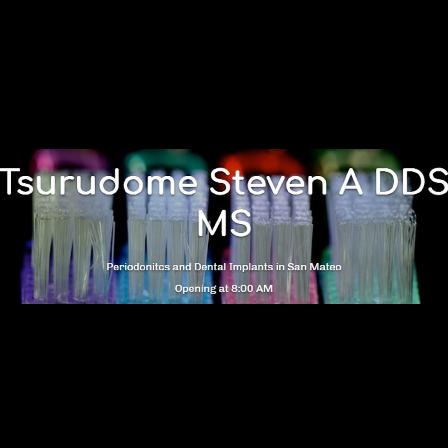 Dr. Steven A Tsurudome
