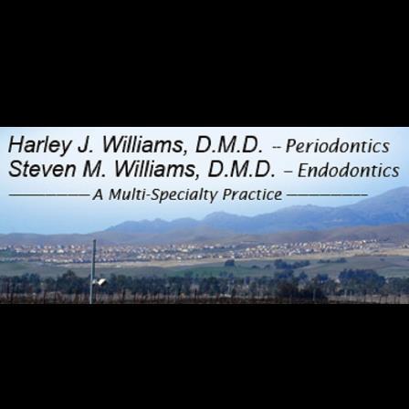 Dr. Steven M Williams
