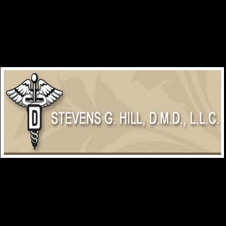 Dr. Stevens G Hill, Jr.