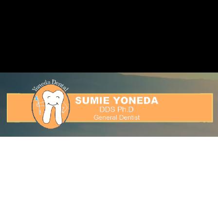 Dr. Sumie Yoneda
