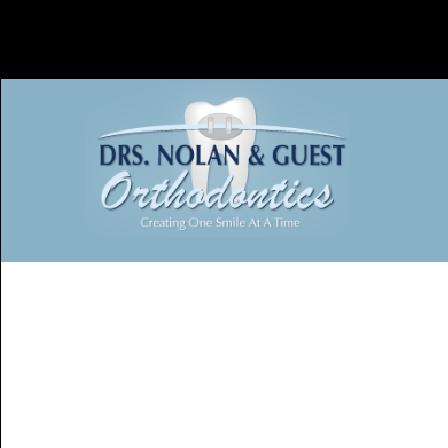 Dr. Susan S. Guest