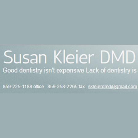 Dr. Susan T Kleier
