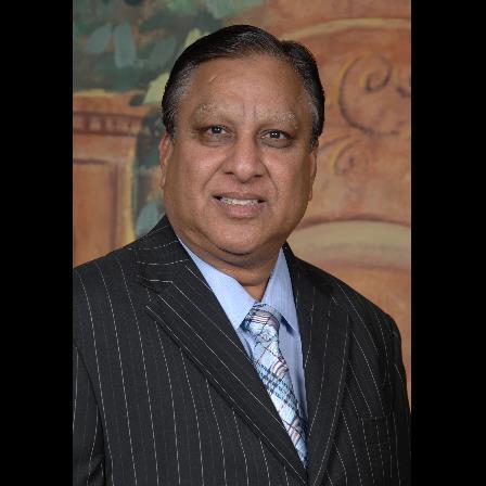 Dr. Tarsem L Singhal