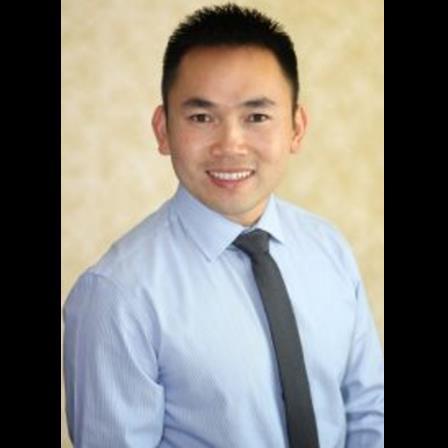 Dr. Thao Le