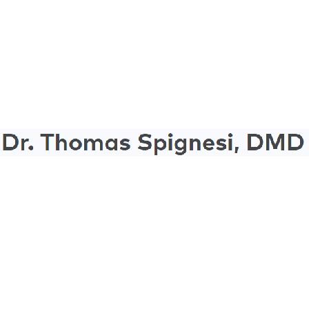 Dr. Thomas E Spignesi