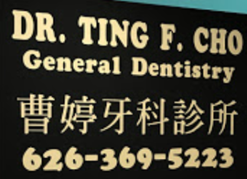 Dr. Ting Cho