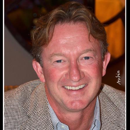 Dr. Tony P Vertongen