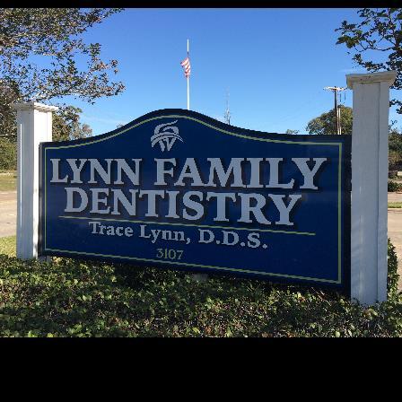 Dr. Trace L Lynn