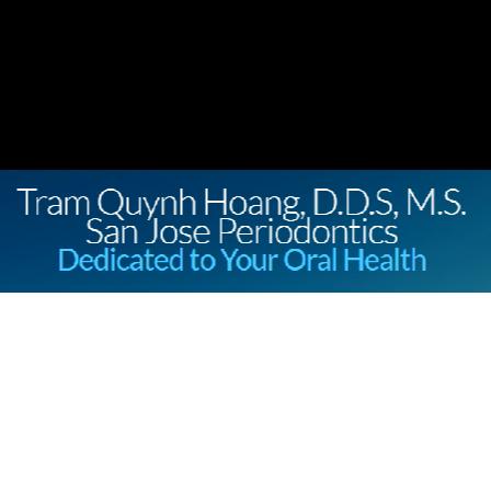 Dr. Tram Q Hoang