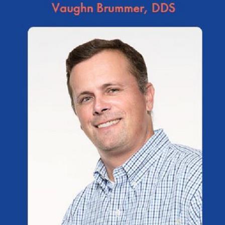 Dr. Vaughn E Brummer