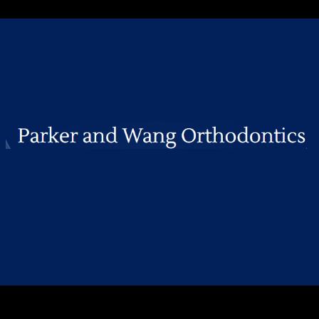 Dr. Vicki Wang