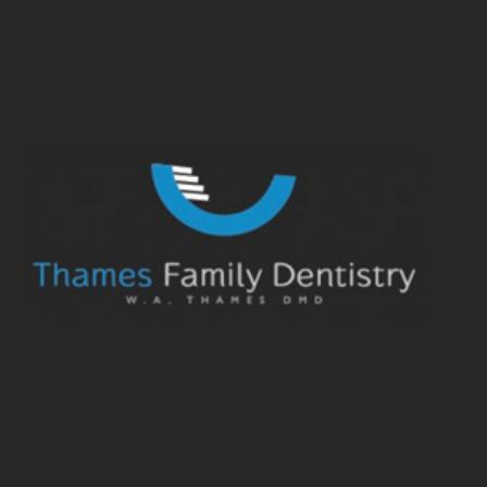 Dr. Walter A Thames, Jr.