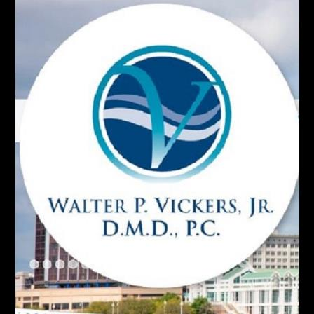 Dr. Walter P Vickers, Jr.