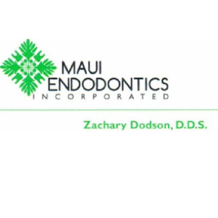 Dr. Zachary T Dodson